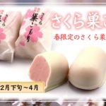 コロナ禍の中でも、桜咲かそう!『さくら巣ごもり』で春を満喫!